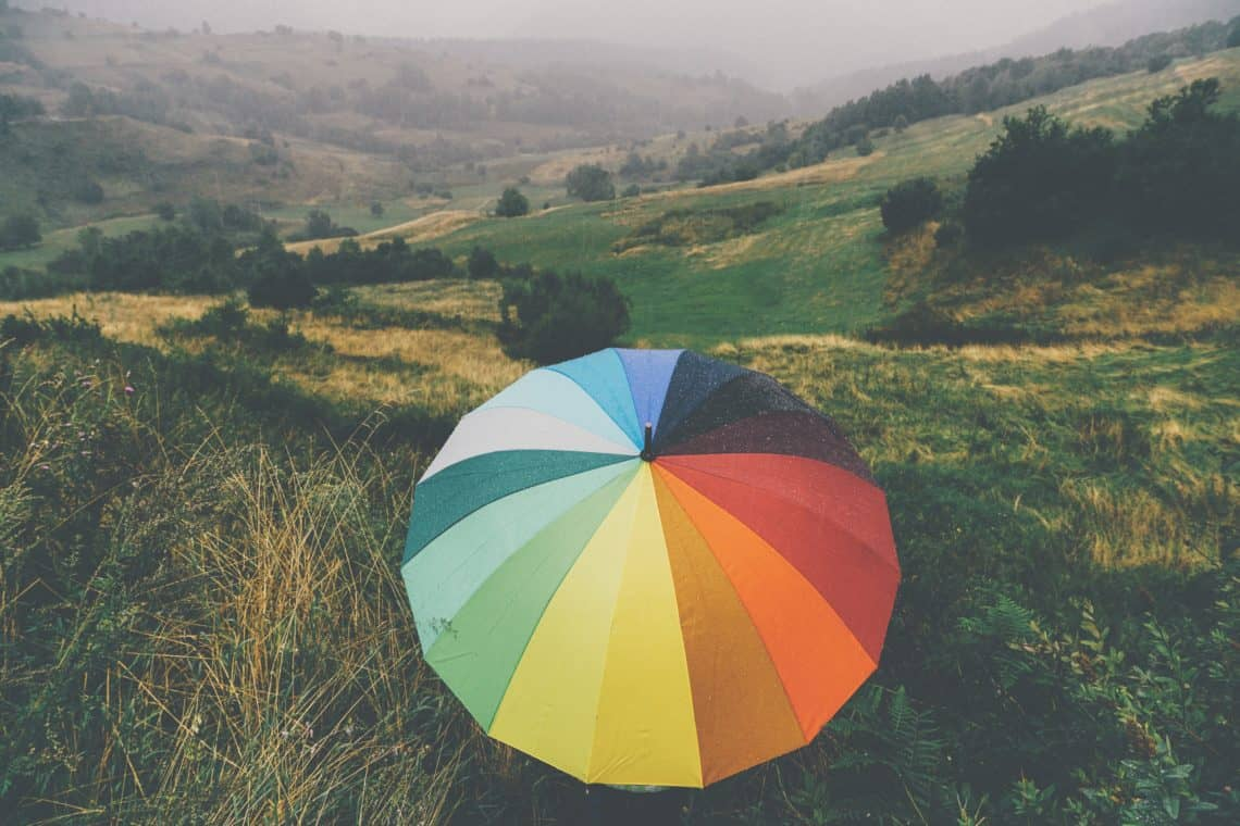 Rainy Day in a Field